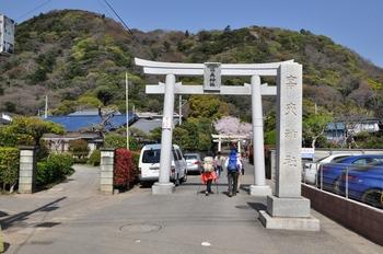 1高来神社と高麗山.jpg
