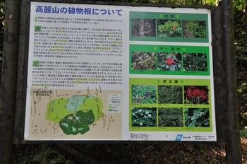 6高麗山の植物相.jpg