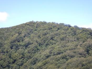 ⑥上賽の河原から奥宮を見る.JPG