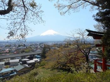 新倉山.JPG